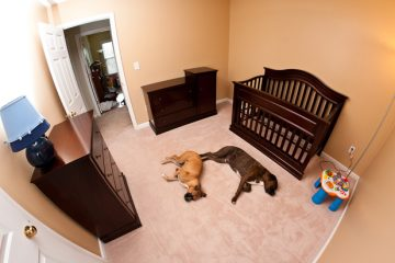 Baby's Room with Furniture